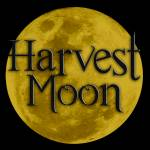 . Harvest Moon . Profile Picture