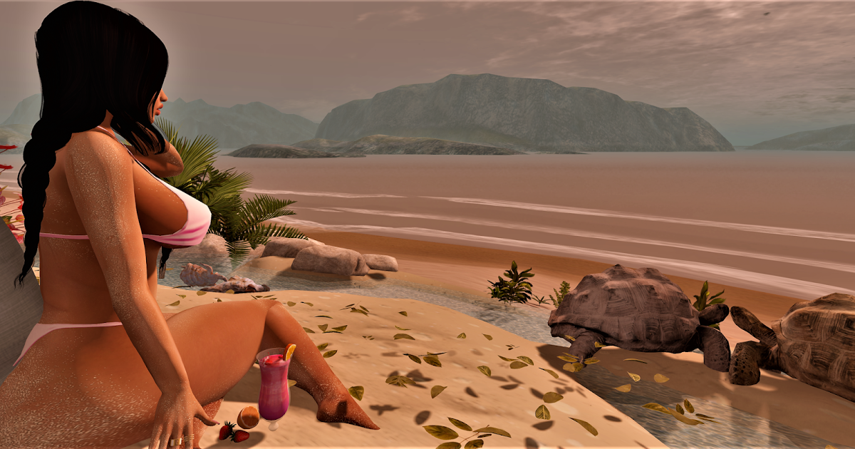 Destiny Mynx : Destiny ~ The Turtles Isle
