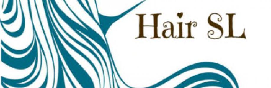 HairSL Cover Image